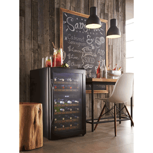 ... best wine cooler reviews